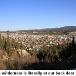 whitehorse-1233